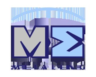 logo METALENG